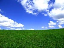 Hintergrund des blauen Himmels und der Wiese Lizenzfreies Stockfoto