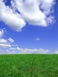 Hintergrund des blauen Himmels und der Wiese Lizenzfreie Stockfotos