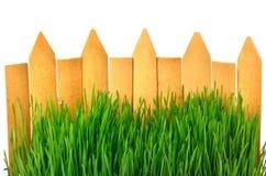Hintergrund des Bretterzauns und des grünen Grases Lizenzfreie Stockfotografie