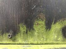Hintergrund 01 des dunklen Holzes und der grünen Form stockfotos