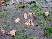 Hintergrund des falschen Wetters Lizenzfreie Stockfotografie