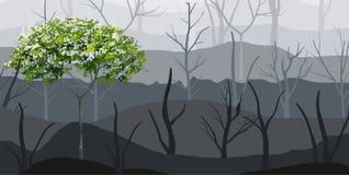 Hintergrund des grünen Baum- und Waldnebels Vektor vektor abbildung