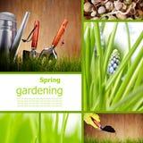 Hintergrund des grünen Grases - Collage stockbild