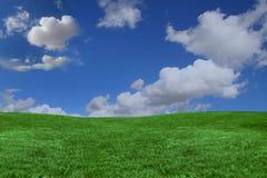 Hintergrund des grünen Grases und des blauen Himmels mit Exemplar spac Lizenzfreie Stockbilder
