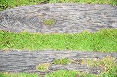 Hintergrund des grünen Grases und des Klotzes Stockbild