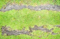 Hintergrund des grünen Grases und des Klotzes Lizenzfreies Stockfoto