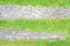 Hintergrund des grünen Grases und des Klotzes Lizenzfreies Stockbild