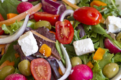 Hintergrund des grünen Salats Lizenzfreie Stockbilder