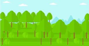 Hintergrund des grünen Waldes Lizenzfreie Stockfotos