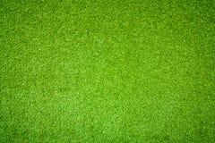 Hintergrund des grünen Grases Lizenzfreie Stockfotografie
