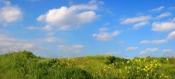 Hintergrund des Himmels und des Grases Stockfotos