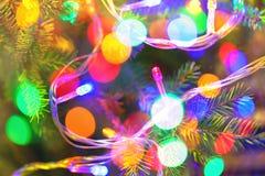 Hintergrund des Inneres verzierte Weihnachtstannenbaum mit bunten Lichtern Lizenzfreie Stockfotografie