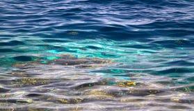 Hintergrund des Meeresgrunds im tropischen grünen Wasser Lizenzfreie Stockfotos