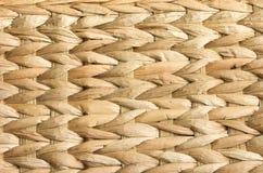 Hintergrund des natürlichen Musters Stockbild