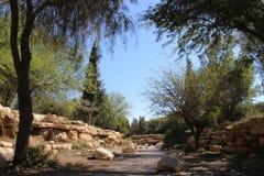 Hintergrund des Naturpark-Gartens draußen Lizenzfreie Stockbilder