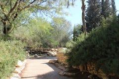 Hintergrund des Naturpark-Gartens draußen Lizenzfreies Stockbild