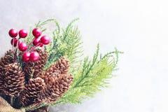 Hintergrund des neuen Jahres und des Weihnachten Weihnachtsrahmen mit Dekoration, Zweig der Kiefer, Kegel und Beeren Platz für Te Stockfotos