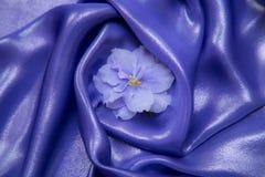 Hintergrund des Purpurs, blaues glänzendes Gewebe, mit Veilchen Lizenzfreie Stockfotos