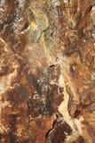 Hintergrund des verwitterten stehenden Steins des Bronzezeitalters Stockfotos