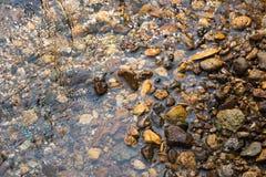 Hintergrund des Wassers und des Steins lizenzfreie stockbilder