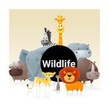 Hintergrund des wilden Tieres Lizenzfreies Stockbild