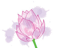 Hintergrund. Eine abstrakte rosafarbene Blume Lizenzfreie Stockfotografie
