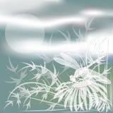 Hintergrund, eine weiße Libelle auf einer Kamille lizenzfreie abbildung