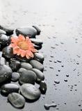 Hintergrund eines Badekurortes mit Steinen Lizenzfreies Stockbild