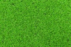 Hintergrund eines grünen Grases Beschaffenheit des grünen Grases der Beschaffenheit des grünen Grases von einem Feld Stockbilder