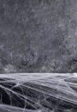 Hintergrund für Halloween Graue Beschaffenheit Spinne ` s Netz Lizenzfreie Stockbilder
