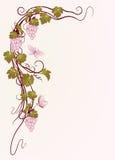 Hintergrund für Ihren Text mit Reben in der Weinleseart Lizenzfreie Stockbilder