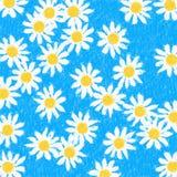 Hintergrund-Gänseblümchen auf Blau Lizenzfreies Stockfoto