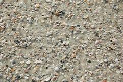 Hintergrund gebildet vom Strand Sand und den Seashells Stockfotografie