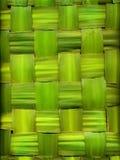 Hintergrund gebildet von den Palmblättern Stockfoto