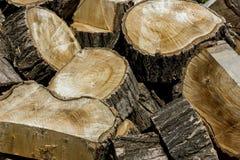 Hintergrund gesägtes Holz Lizenzfreie Stockfotos