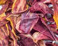 Hintergrund getrocknete Tulpenblumenblätter Stockfotografie