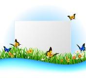 Hintergrund-grünes Gras mit Schmetterling Lizenzfreies Stockfoto
