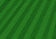 Hintergrund-Gras stockfoto