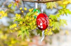 Hintergrund Grean Ostern mit hölzernen Eiern auf dem Baum stockbild