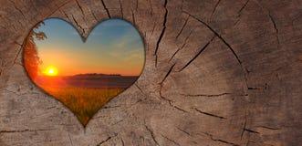 Hintergrund-Herz-Sonnenuntergang-Holz Lizenzfreies Stockbild