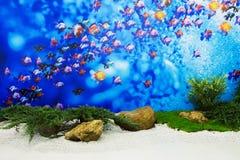 Hintergrund ist ein kleiner Garten mit Fischen stockbild