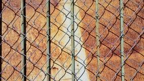Hintergrund, Metalldetails und Beschaffenheiten lizenzfreie stockfotografie