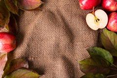 Hintergrund mit Äpfeln stockbild