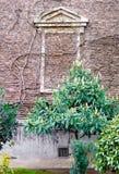 Hintergrund mit Backsteinmauer, in der das Fenster im Vordergrund und Bäume im Frühjahr mit Büschen bepflanzt Stockfotografie