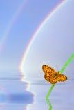 Hintergrund mit Basisrecheneinheiten und Regenbogen Stockfotografie