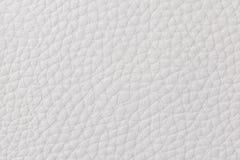 Hintergrund mit Beschaffenheit des weißen Leders Stockbilder