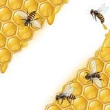 Hintergrund mit Bienen stock abbildung