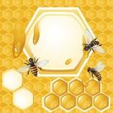 Hintergrund mit Bienen und Bienenwabe lizenzfreie abbildung