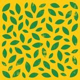 Hintergrund mit Blättern Stockbilder