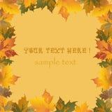Hintergrund mit Blättern herum Stockfoto